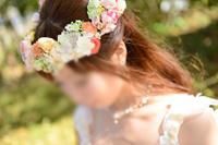 DSC_4358_R_syu